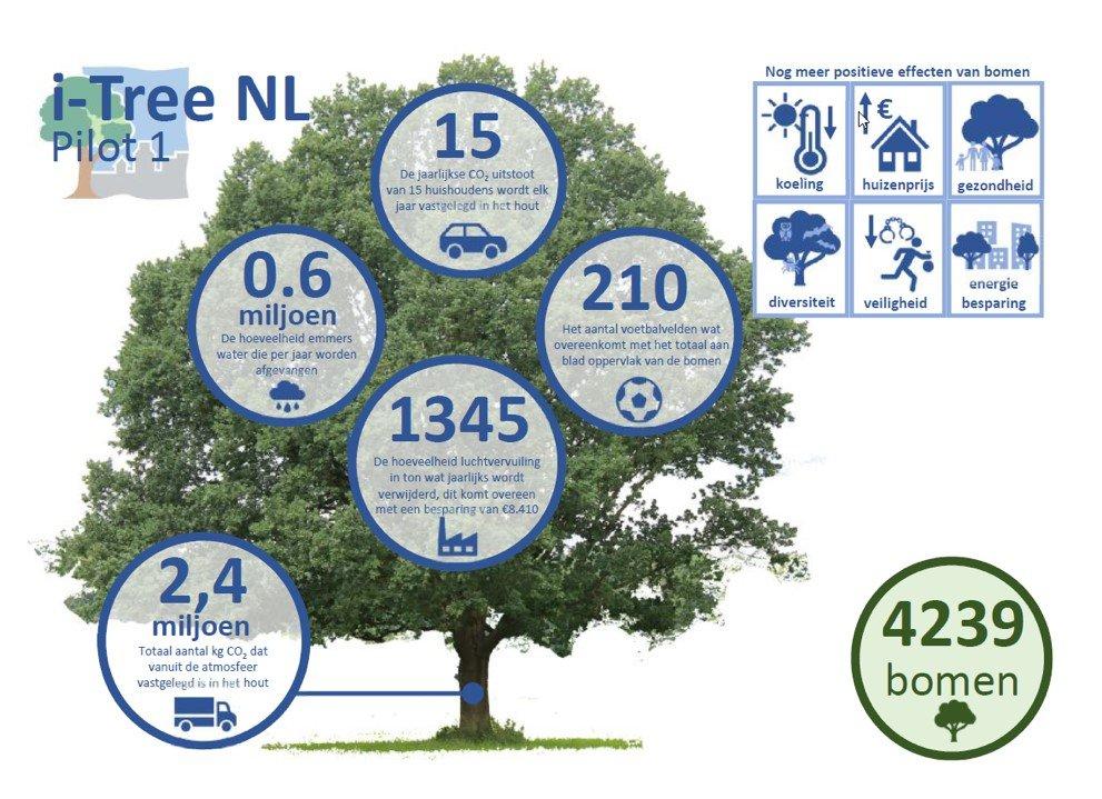 Smart Zwolle bos