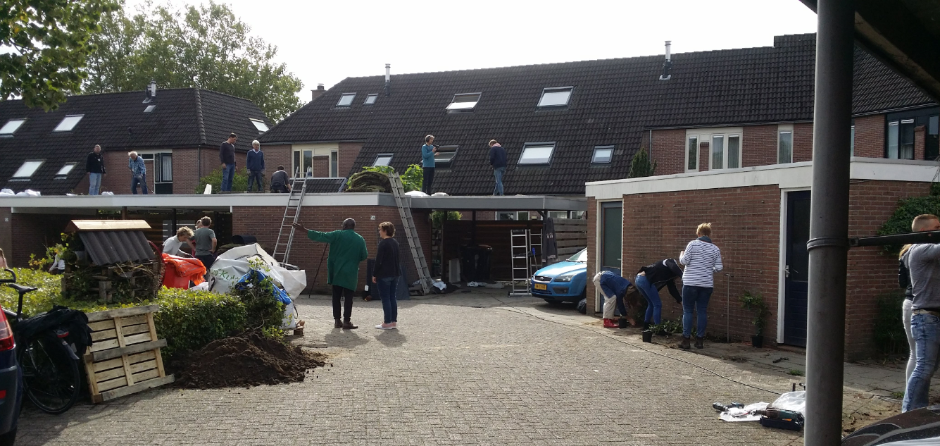 Aanleg groene daken te Deventer